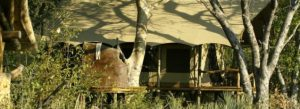 Botswana_Okavango_Tubu_Tree_Camp