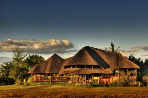 Desert & Delta Chobe Savanna