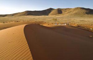 Namibia-Sossusvlei-Desert-Lodge-Duene