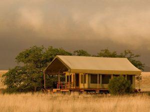 Namibia_Damaraland_Desert_Rhino_Camp