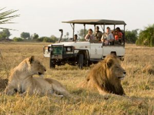 Botswana Sanctuary Chief's Camp