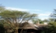 imgs Kenia/MaraSimba/
