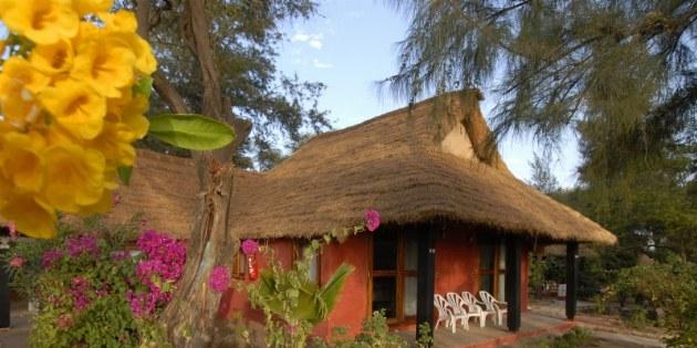 imgs Senegal/Baobab_Decameron_La_Somone_Senegal/