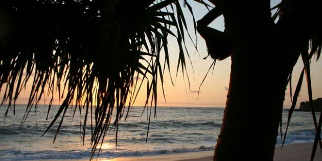 imgs Tanzania/Amani_Beach_Tansania/