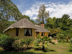 imgs Tanzania/Arusha_Safari_Lodge_Tansania/
