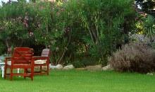 imgs Suedafrika/MimosaLodge/