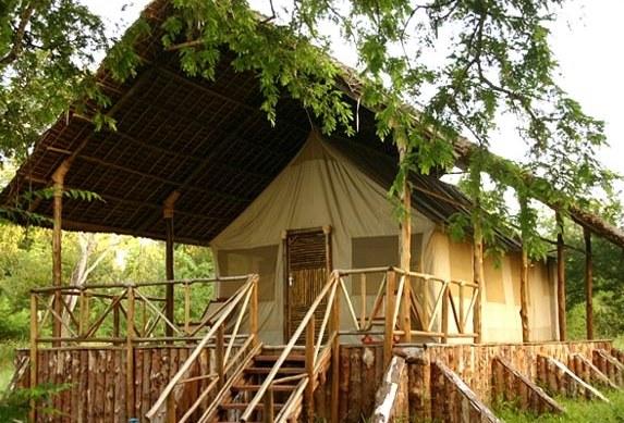imgs Tanzania/SelousRiverside/